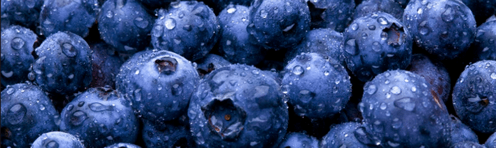 Are Blueberries the Key to Fighting Gum Disease